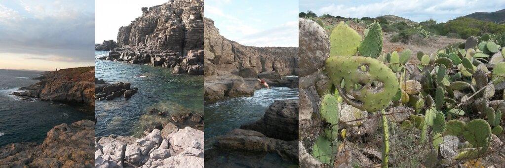 Sardaigne-mer-et-cactus.jpg